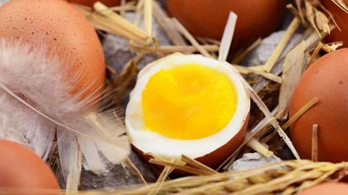 Ist das Ei frisch? - © photocrew