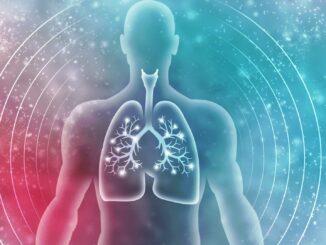 Funktion der Lunge   © jijomathai - stock.adobe.com