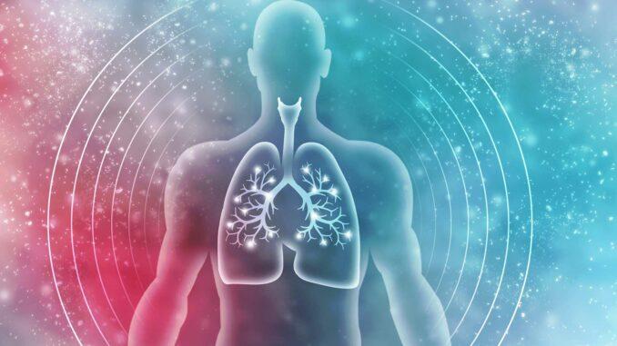 Funktion der Lunge | © jijomathai - stock.adobe.com