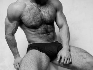 Arten von schwulen Bären | © Andrei vishnyakov - stock.adobe.com